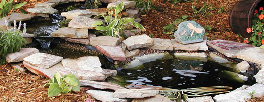 Backyard Landscaping Trends