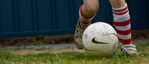 Building A Backyard Soccer Field Signature Contractors