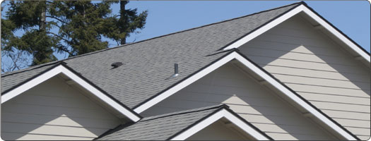 Roofing Costs: An In-Depth Breakdown