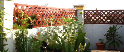 The History Of Rooftop Gardens Signaturecontractors